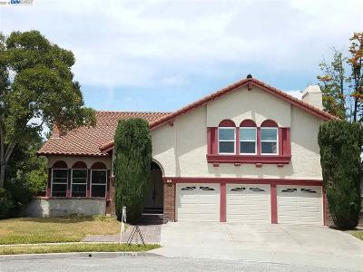Milpitas Single Family Home For Sale: 463 Dundee Ave