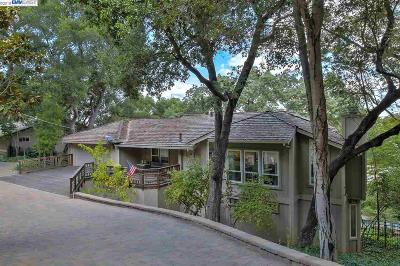 Pleasanton Single Family Home For Sale: 16 Castledown Rd