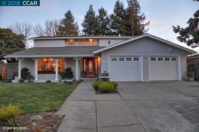 Danville, San Ramon Single Family Home New: 285 Greenbrook Dr