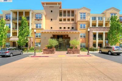 Fremont CA Condo/Townhouse New: $799,988