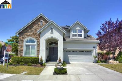 Dublin Single Family Home For Sale: 4809 Landmark Way