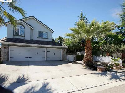 Antioch Single Family Home New: 5050 Toyon Way