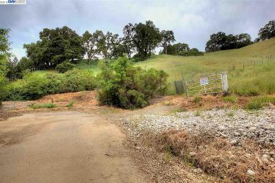Pleasanton Residential Lots & Land For Sale: Foothill