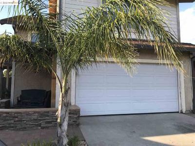 Oakley Single Family Home New: 378 Hazelnut Ln