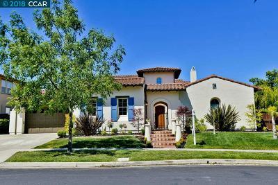 San Ramon Single Family Home For Sale: 5404 Heatherland Drive