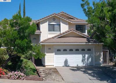 Concord Single Family Home For Sale: 5406 Paso Del Rio Ct