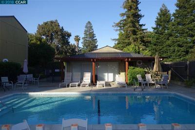 Concord Condo/Townhouse For Sale: 1060 Oak Grove Rd #15