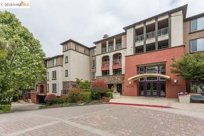 Walnut Creek Condo/Townhouse For Sale: 1800 Alma Avenue #101
