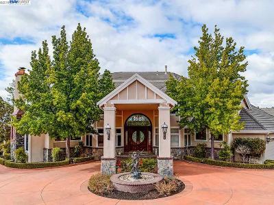 Pleasanton CA Single Family Home For Sale: $3,299,000