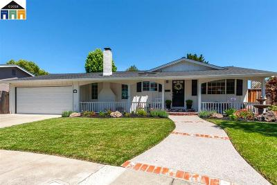Pleasanton CA Single Family Home For Sale: $1,050,000