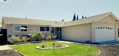 Pleasanton Single Family Home For Sale: 4737 Herrin Way