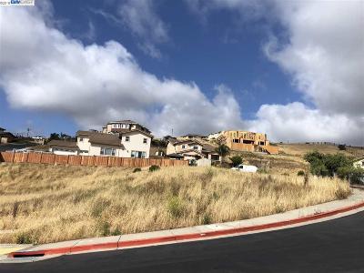 Hayward Residential Lots & Land For Sale: 24580 Karina Ct
