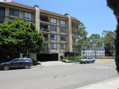 San Leandro Condo/Townhouse For Sale: 1132 Carpentier #209