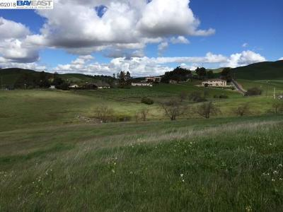 Sunol Residential Lots & Land For Sale: 7798 Laguna Heights Court