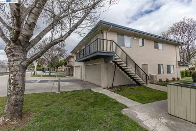 Antioch Condo/Townhouse Back On Market: 2104 Lemontree Way #4
