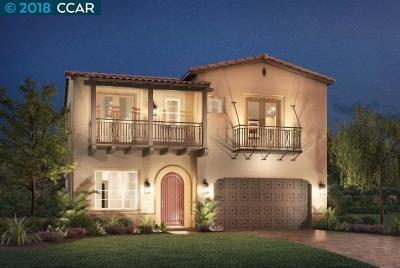 San Ramon Single Family Home For Sale: 2006 W Trefoil Rd