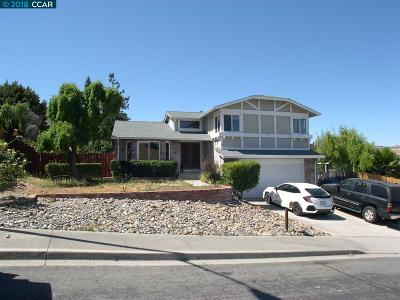 Antioch Single Family Home For Sale: 904 Badger Way