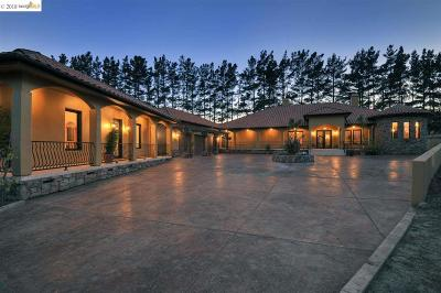 Sonoma County Single Family Home For Sale: 1455 Valley Ford Freestone Rd