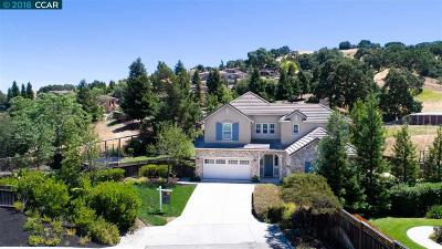 Danville Single Family Home For Sale: 31 Rockhaven Ln
