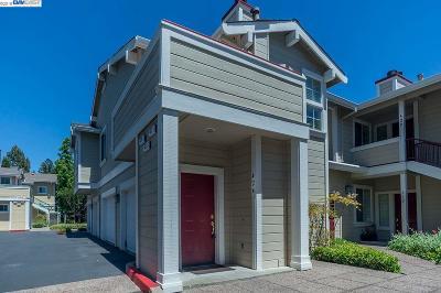 San Ramon Condo/Townhouse For Sale: 424 Skyline Drive