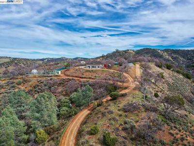 Livermore Single Family Home For Sale: 19990 Mines Road