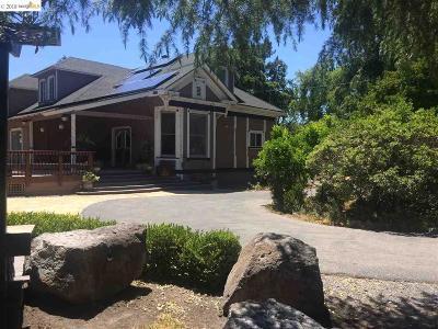 Danville Single Family Home For Sale: 2860 Camino Tassajara