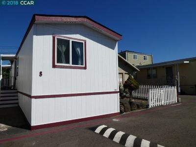 Castro Valley Mobile Home New: 3998 Castro Valley Blvd 8