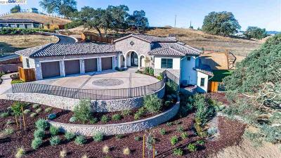 Pleasanton CA Single Family Home New: $4,250,000