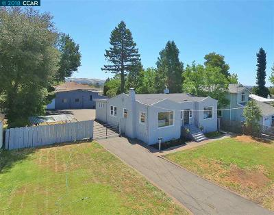 Castro Valley Single Family Home For Sale: 19304 Parsons Ave