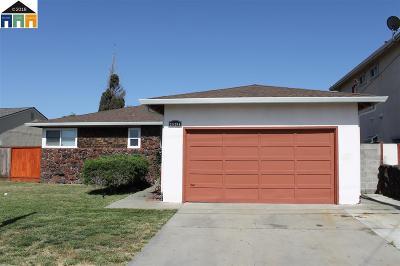 Hayward Single Family Home New: 28294 Dickens
