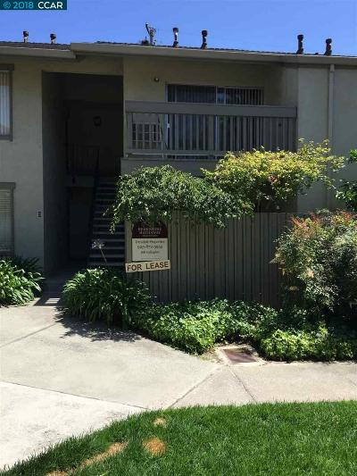 Walnut Creek Rental For Rent: 2560 Walnut Blvd #41