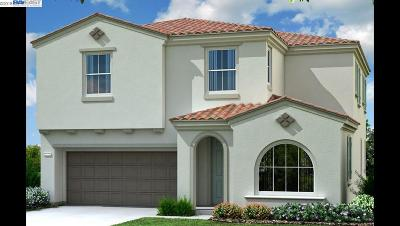 Hayward Single Family Home New: 30053 Mountain View Drive