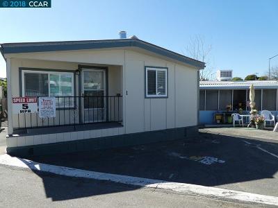 Castro Valley Mobile Home New: 3875 Castro Valley Blvd 1