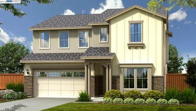 Dublin CA Single Family Home New: $1,536,352