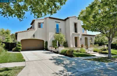 San Ramon Single Family Home Contingent: 2223 Britannia Dr
