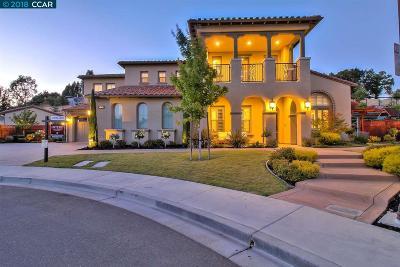 Danville Single Family Home For Sale: 46 Weber Pl