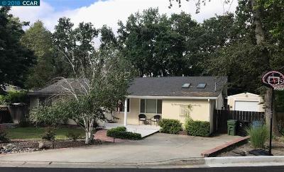 Danville Single Family Home New: 155 Vista Del Diablo