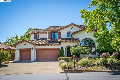 Pleasanton Single Family Home New: 2133 Pomezia Court