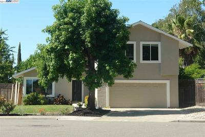 Pleasanton Single Family Home New: 4261 Mairmont Dr