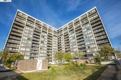 Condo/Townhouse New: 801 Franklin St #1217