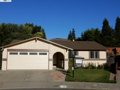 Pleasanton Single Family Home New: 598 San Miguel Court