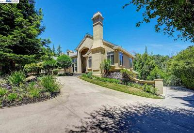 Pleasanton Single Family Home New: 2047 Valley Oak Rd