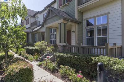 Fremont Condo/Townhouse New: 491 Pariso Ter
