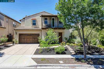 Danville Single Family Home For Sale: 3107 Martingale Dr