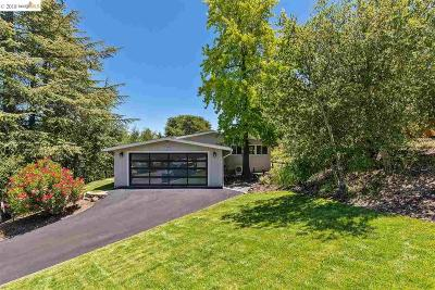 Orinda Single Family Home For Sale: 57 Meadow View Road