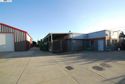 Hayward Commercial For Sale: 519 Claire St