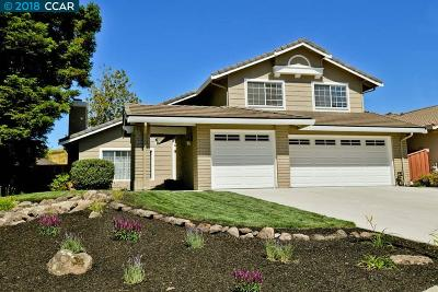 San Ramon Single Family Home For Sale: 505 Marble Canyon Ln.