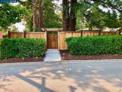 Danville Single Family Home For Sale: 143 Pulido Rd