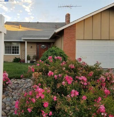 Livermore Single Family Home For Sale: 515 Humboldt Way