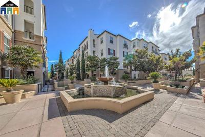 Dublin Condo/Townhouse For Sale: 3385 Dublin Blvd #142